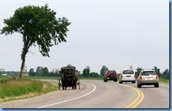 4994 On way to Kissing Bridge - Mennonite buggy