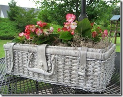 shabby  basket planter_thumb[9]