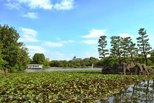 Glória Ishizaka - Jardim Botânico Nagai - Osaka 5