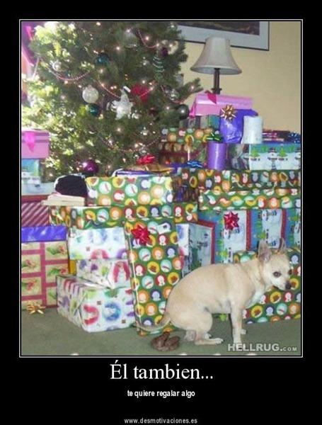 11 - desmotivaciones navidad cosasdivertidas (16)