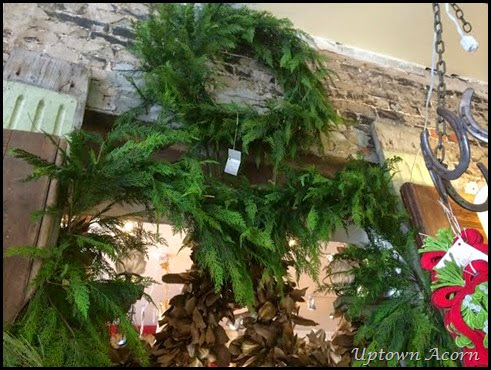 cedar greens