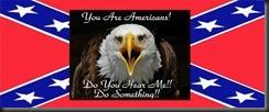 a rebel eagle