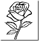 beautiful_rose1