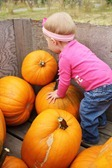 Top Ten Pumpkin Recipes
