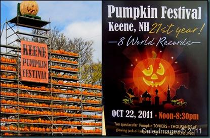 pumpkinfest collage1