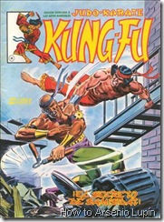 P00008 - Kung Fu #8
