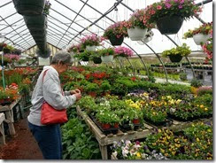 Lou buying plants