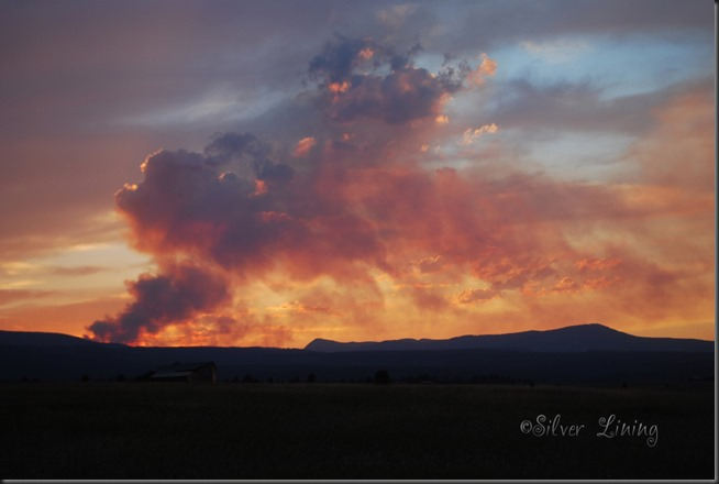 Eureka Fire 2013