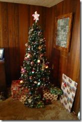cristmas and stuff 001