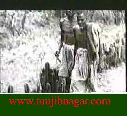 Bangladesh_Liberation_War_in_1971+35.png
