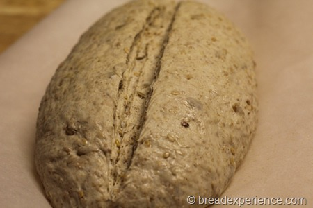 five-grain-rye-sourdough_1302
