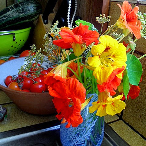 nasturtiums and fennel