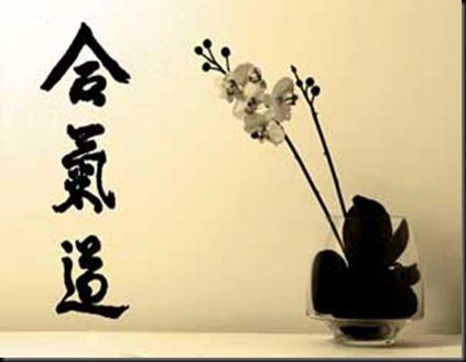 aikido-bn-ridotta-300