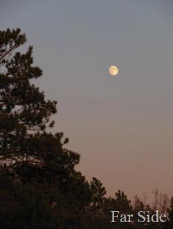 Moon November 08