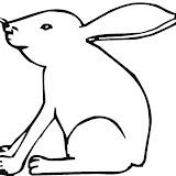 1266374576_Bunny_6.jpg