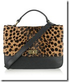 J Crew Leopard Print Bag