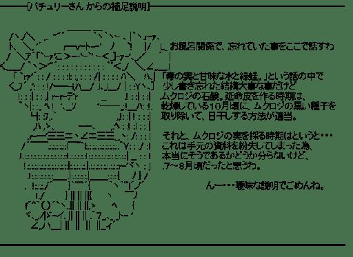 ━[パチュリーさん からの補足説明]━(東方)