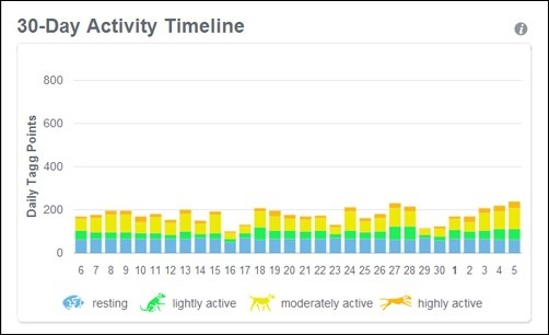 30 day activity timeline