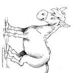 burro-702.jpg