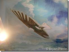 eagle ceiling