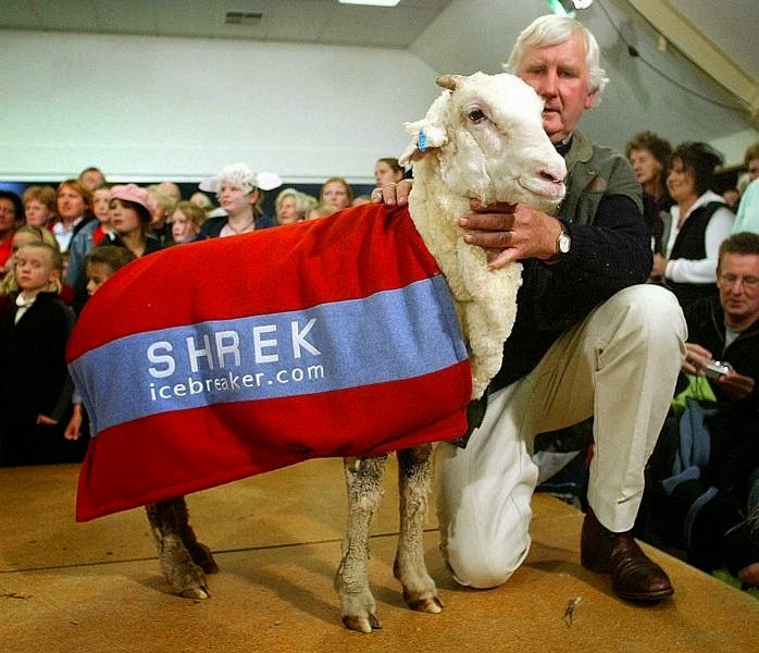 shrek-the-sheep-2