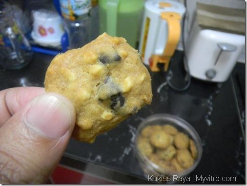 Cookies Raya Kakinakl 7