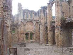 2008.09.05-042 vestiges de l'abbaye d'Alet
