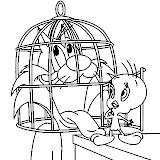 dibujos-animados-piolin-peq%255B1%255D.jpg