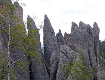 Needles Highway2