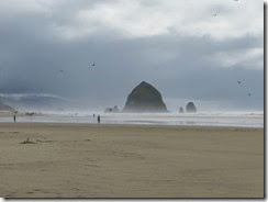 cannon beach 08
