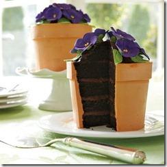african violet cake