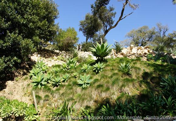 18 - Glória Ishizaka - Parque de Monserrate - Sintra - 2012