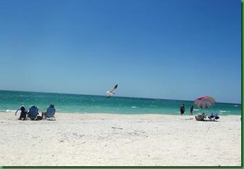 Nokomis Beach & Otter 001A