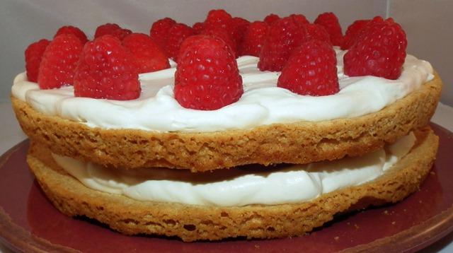 Raspberry Meringue Cake 10-28-11 #1
