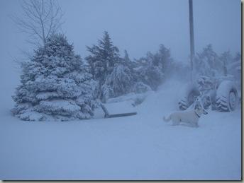 christmas blizzard 133