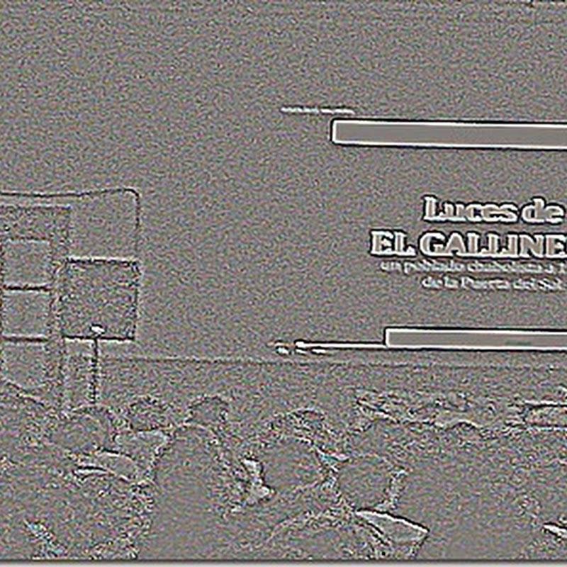 GALLINERO: GURE PROIEKTUAREN AURKEZPENA