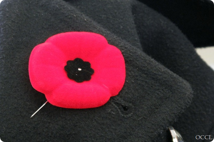 November 11, 2011   A poppy displayed on the lapel of a coat. Photo by Trish Allison