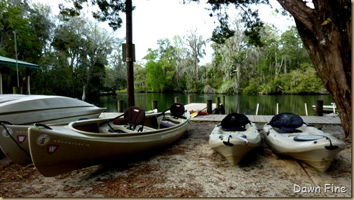 Chassahowitza River canoeing_252