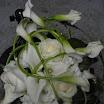 quinten,moeke,febr2012 122.jpg