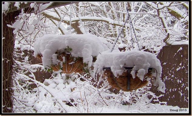 1-snow2013 001