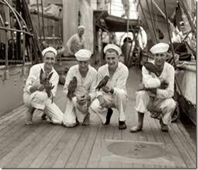 sailors and parrots