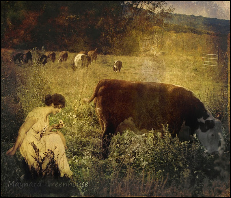 pastoral