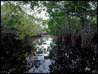 04c - Noble Hammock Canoe Trail - Paddle to Marker 1