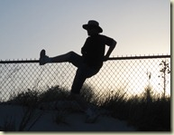 jumping_fence