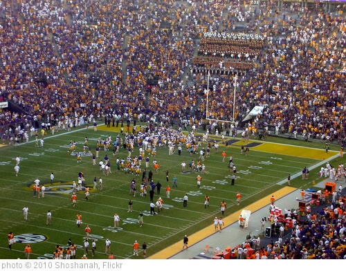 'LSU Wins!' photo (c) 2010, Shoshanah - license: http://creativecommons.org/licenses/by/2.0/