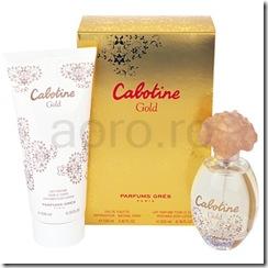 gres-cabotine-gold-set-cadou-i___2
