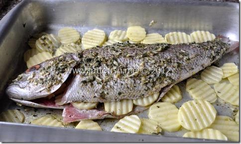 وصفة السمك المشوي بالفرن من www.fattoush.me