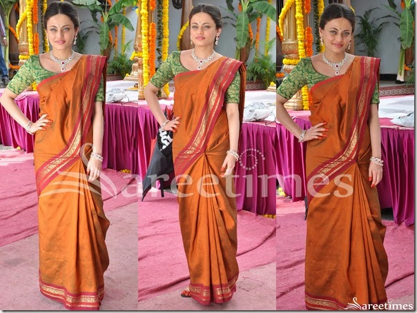 Sneha_Ullal_Silk_Saree