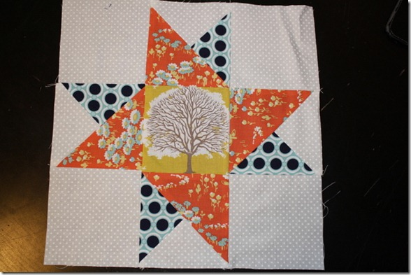 Sew Stormy Star Along 002