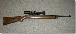 Ruger_1022_Carbine